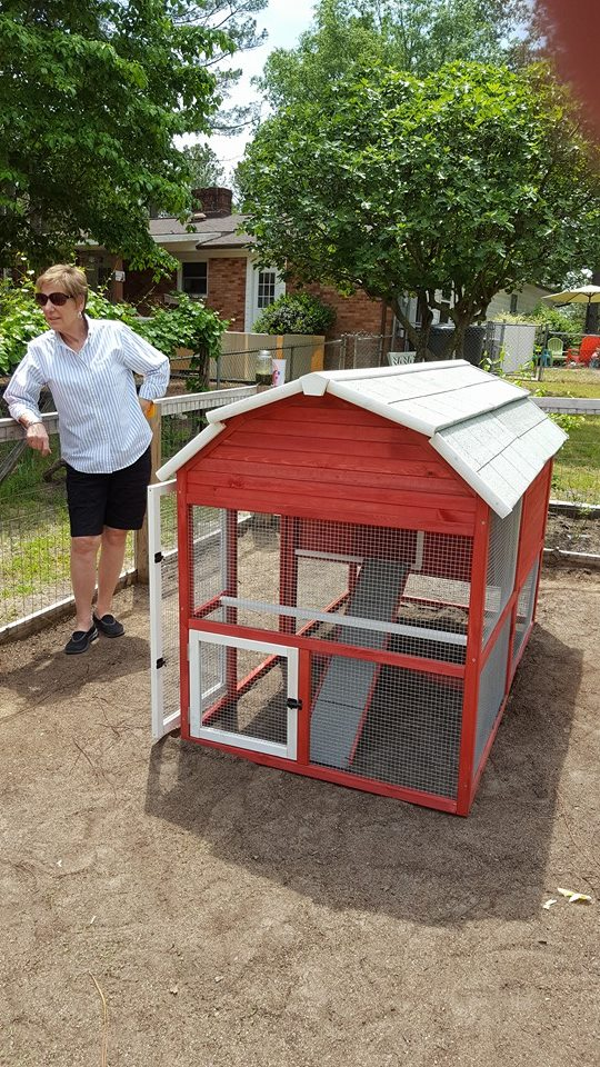 Before the chicken OR the egg... You Need A Coop!